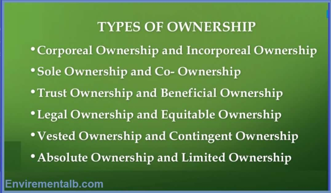 types of ownership in jurisprudence