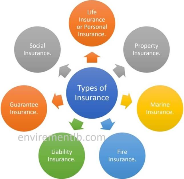 Insurance and types of insurance
