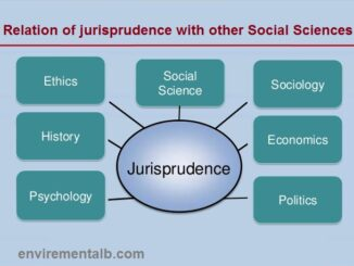 Relation of Jurisprudence with other social sciences